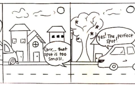 The Parking Fiasco